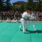 Arti Marziali e Sport da Combattimento – Inizio Corsi Anno 2013