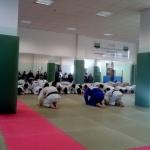 L'Arte del Judo